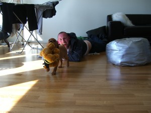 Fox med lekisen han just fått av sin FarrMorr och FarrFarr i Varberg