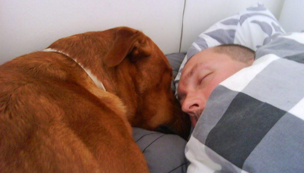 Jag hjälpte husse att vila lite här på dagen.