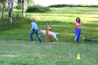 Sofia, Hugo och Clara tränar agility i Värmland
