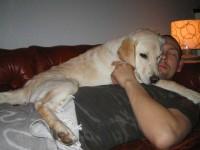 Hugo på den skönaste madrassen