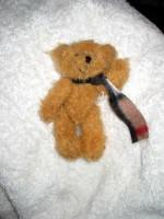 Den fällda björnen