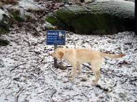 Hugo läser skylten noga