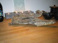 En torkad krokodil