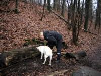 Hugo kollar sitt släktträd