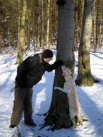 Hugo lär Jocke att klättra i träd