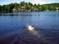 Hugo simmar målmedvetet