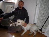 Jocke och Hugo på kontoret