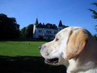 Hugo framför sitt slott