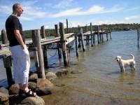 Hugo kollar hamnen