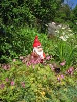 Trädgårdstomten