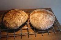 två vita bröd med levain